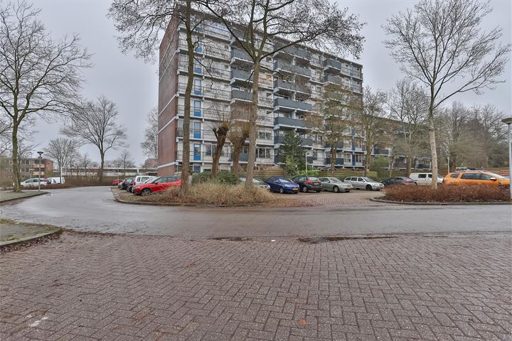 appartement Lewenborg Groningen